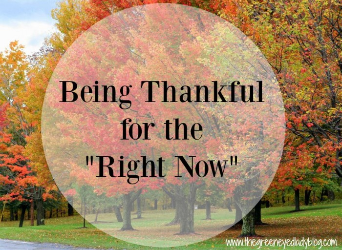 ThankfulNow